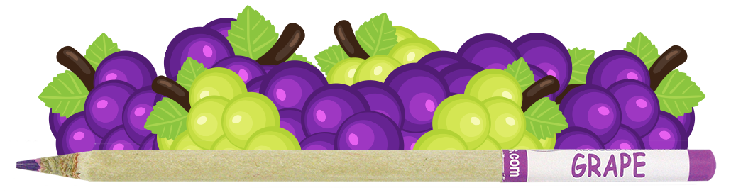 Coloured Smencil - Grape